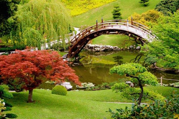 Jardin Japonais Quelles Plantes Choisir